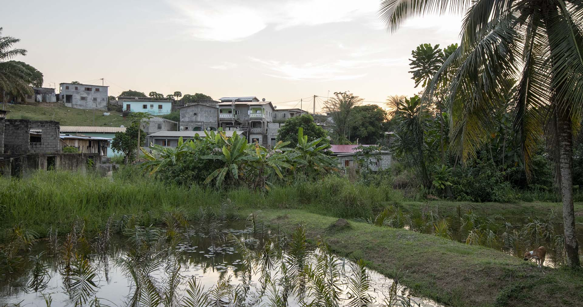 Documentary Photography and Video Production, NEPAD Gabon